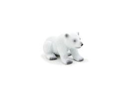 Animal Planet Polar Bear