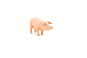 Animal Planet Pig (Sow)